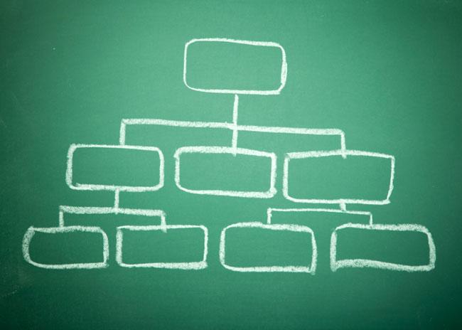 Blank organisation chart