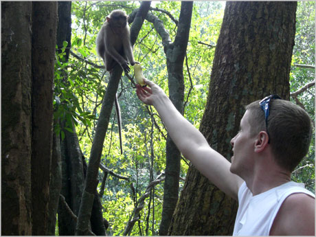 David Airey feeding a monkey
