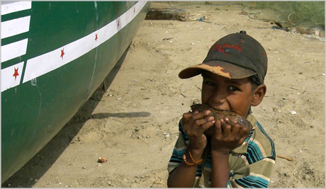 Indian boy eating coconut