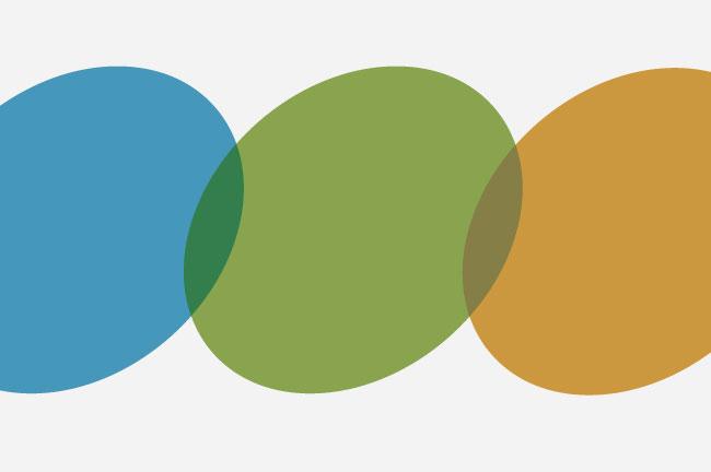 USI logo palette